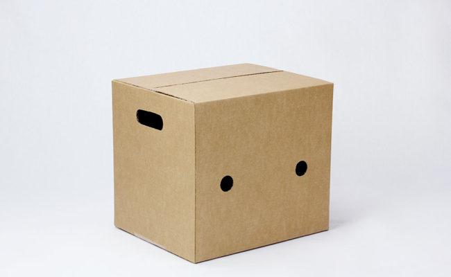 AMERICANE_5-scatola-con-fori